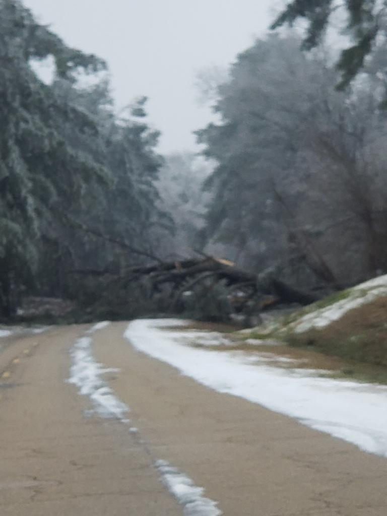 winter storm 2021 www.mllwg.com
