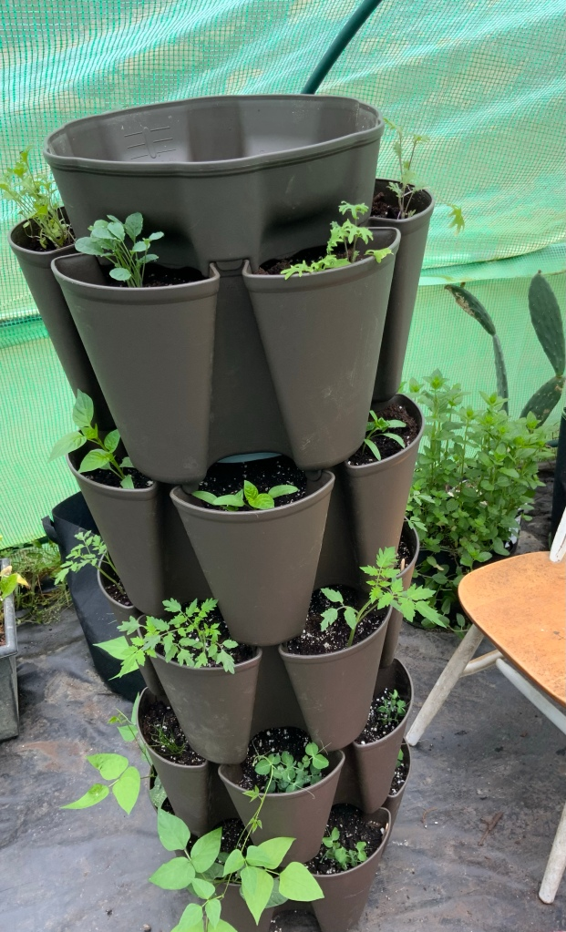 So far so good with my green stalk planter!