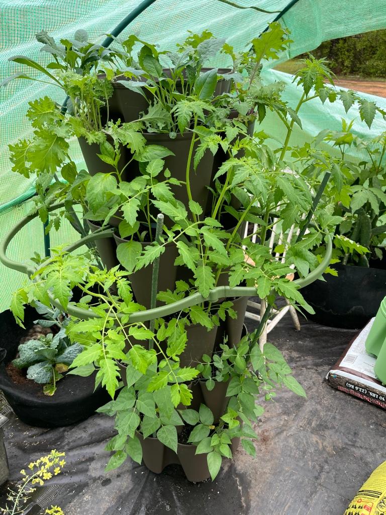Mom life and gardening GreenStalk planter update
